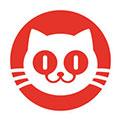 猫眼电影专业版官方下载