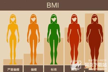 BMI计算器下载