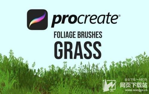 Procreate Pocket